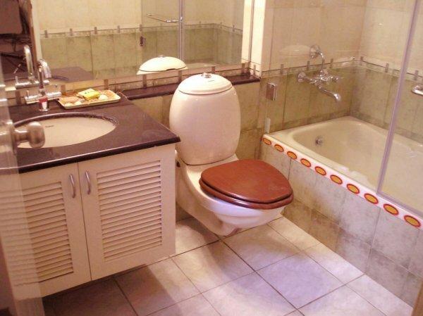 Светлая плитка в совмещенной ванной с туалетом сделает их визуально больше