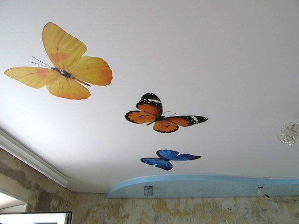 Веселые «Бабочки» на белом фоне