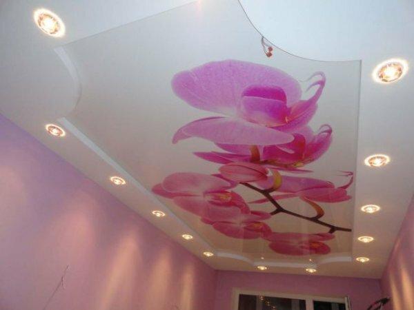 Изысканные орхидеи в японском стиле