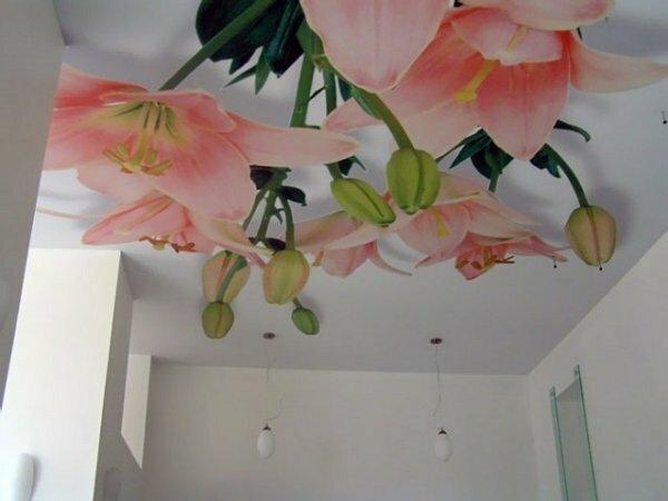 Крупные 3D-орхидеи