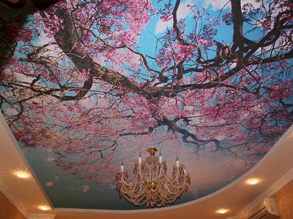 Изысканное «Цветение сакуры»