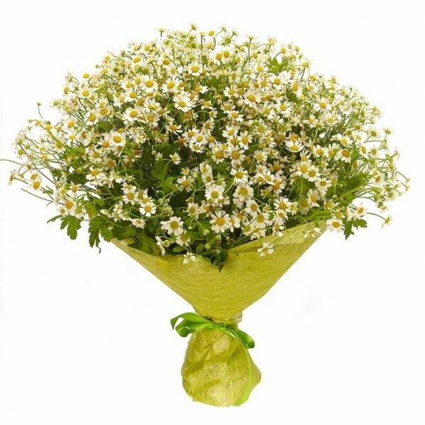 Красиво скомпонованный букет полевых ромашек покорит своим очарованием любую девушку