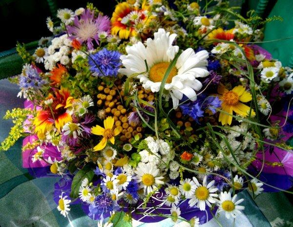 Охапка полевых цветов покорит тех, кто любит романтику