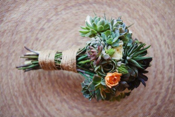 Суккуленты – главный тренд во флористике последних лет