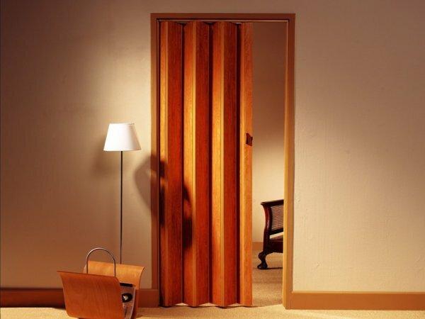 На фото идеальное цветовое сочетание комнаты и пластиковой двери