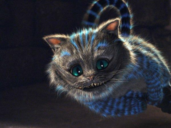 Любимый многими кот из известного мультфильма