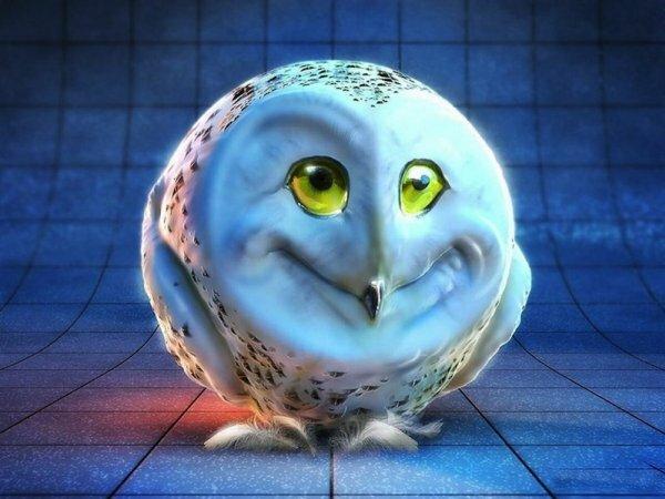 Зачарованная веселая сова – ава для «ВКонтакте» поднимет настроение
