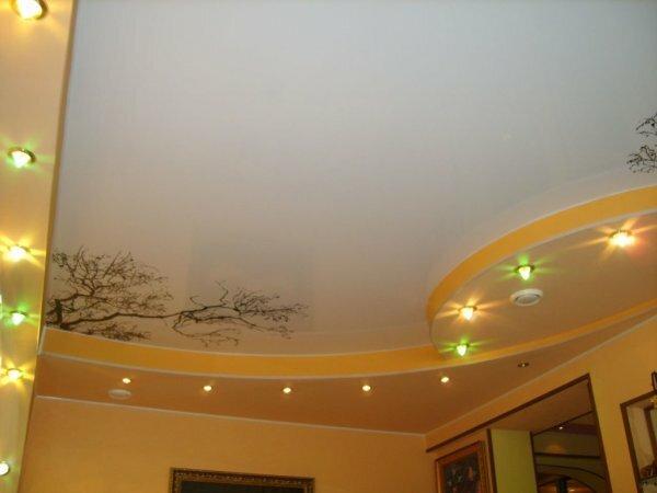 Красивое дерево на одноуровневом потолке – аккуратная фотопечать