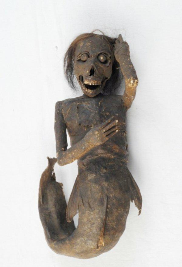 Мумии русалок, хранящиеся в храмах и музеях