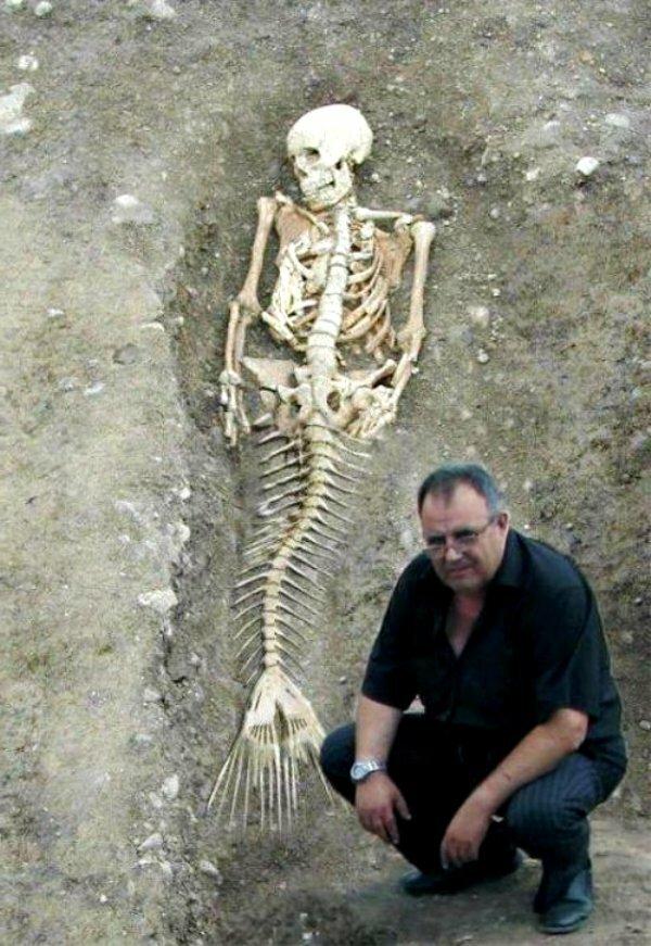 Останки существ с рыбьим хвостом