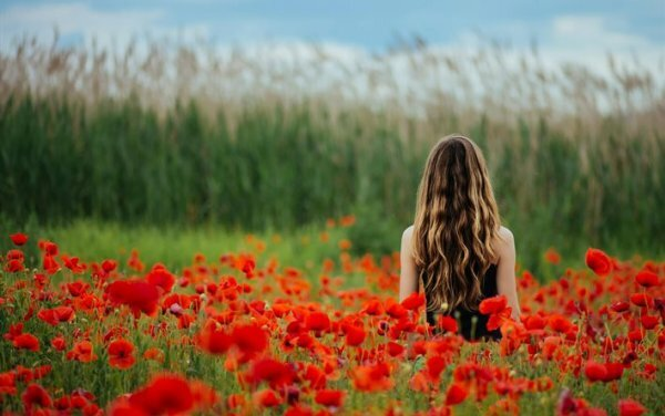 Цветы могут быть не только в руках, но и служить потрясающим фоном, как эти красные маки