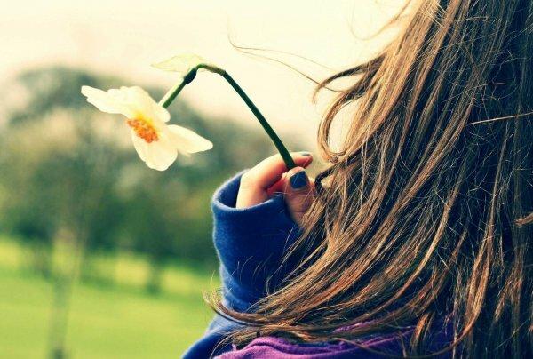 Нежное фото на фоне природы, с прекрасным цветком